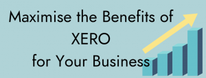 maximise use of xero for your business
