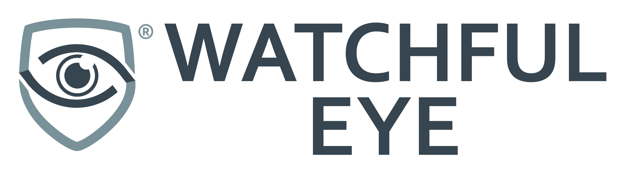 Watchful Eye Software